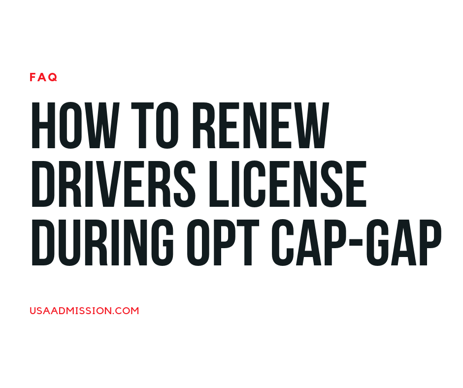 Renew driving license on opt