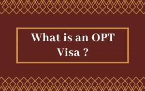 What is an OPT Visa _
