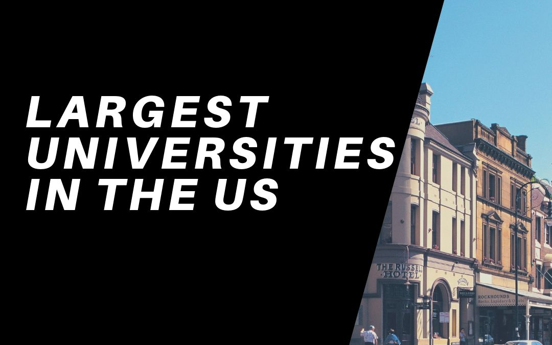 The Five Largest Universities In The United States